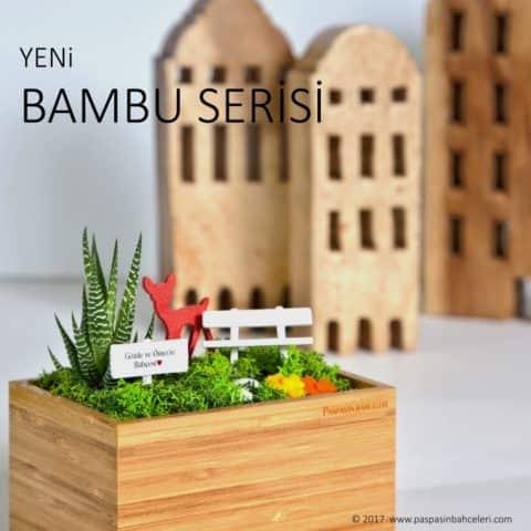 Bambu Serisi - Minyatur Bahceler