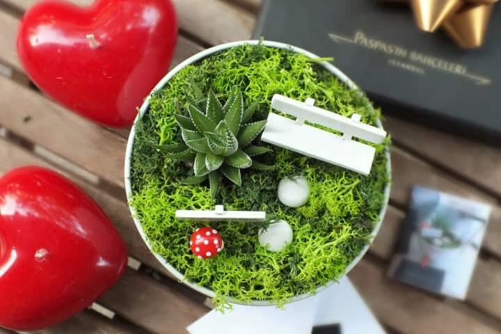 S - Serisi Minyatür Bahçeler