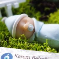 Teraryum ve bonsai minyatür bebek figürü