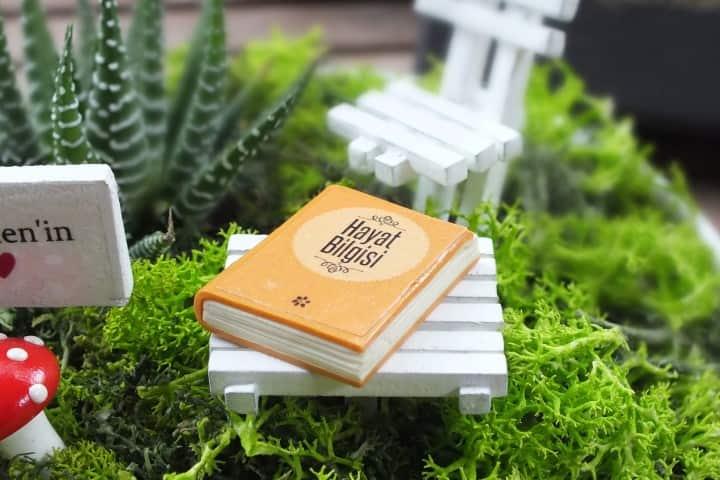 Ögretmenlerimiz İçin Özel Minyatür Bahçe