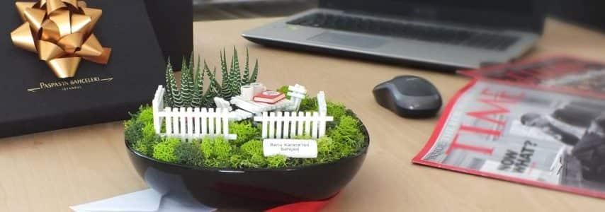 Minyatur bahce - Premium 1