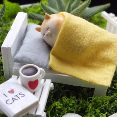 Kedi Isleri Ofisi - Sleeping Beautity