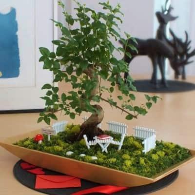 Minyatür Bahçe Paspasın Bahçeleri