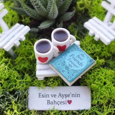 Minyatur Bahce-BFF (3)