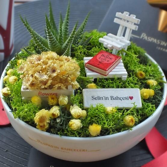 Sukulent Minyatür Bahçe
