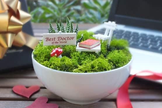 Minyatur Bahce - Tip Bayrami - Best (1)