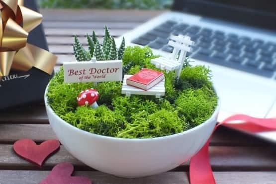 Minyatur Bahce - Tip Bayrami - Best (2)