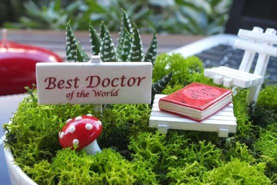 Minyatur Bahce - Tip Bayrami - Best (4)