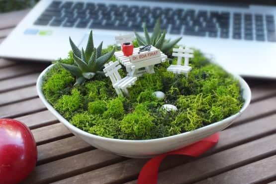 Doktorlar için Özel Minyatür Bahçe