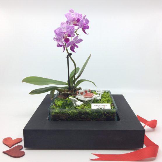 minyatur-orkide-bahceleri-love-3