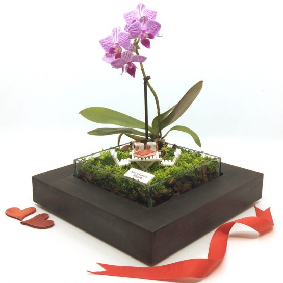 minyatur-orkide-bahceleri-love-8