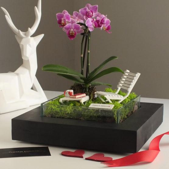 paspasin-bahceleri-minyatur-orkide-bahcesi-1