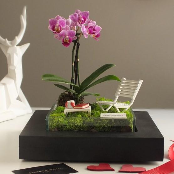 paspasin-bahceleri-minyatur-orkide-bahcesi-4