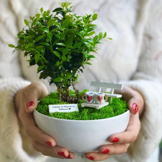 paspasin-bahceleri-two-hearts-bonsai-bahcesi-1