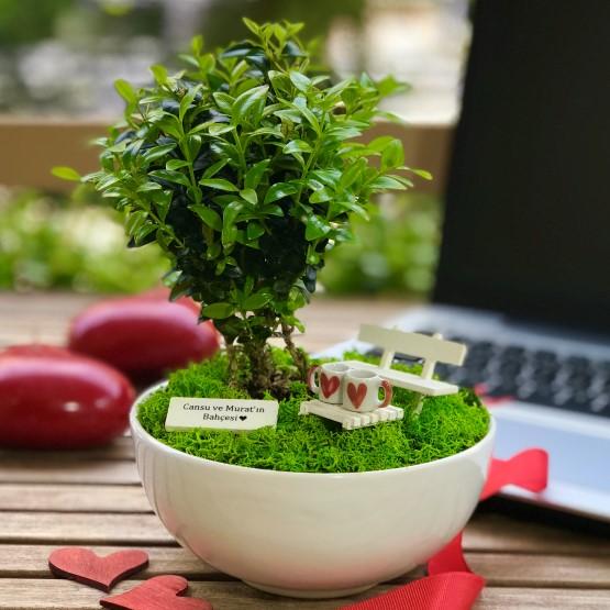 paspasin-bahceleri-two-hearts-bonsai-bahcesi-5