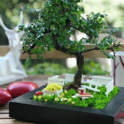 kiiye-zel-anneler-gn-bonsai-bahesi-2