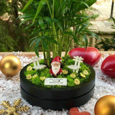 paspasin-bahceleri-minyatur-bahce-the-ring-santa-4