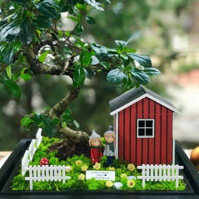 paspasin-bahceleri-sweet-home-2