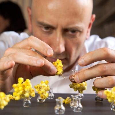 Teraryum el yapımı özel minyatür çiçeklerinin hazırlanışı