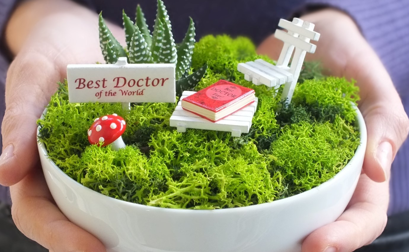Paspasın Bahçeleri - Doktor Hediyesi Minyatür Bahçe